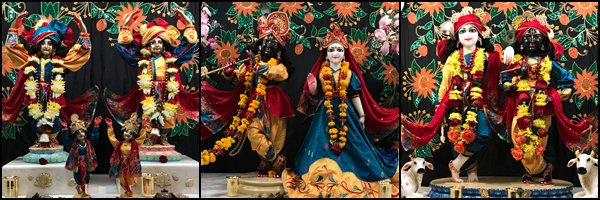 Photos of the ISKCON Alachua temple deities, Sri Sri Gaura-Nitai, Sri Sri Radha-Shyamasundara, and Sri Sri Krishna-Balarama